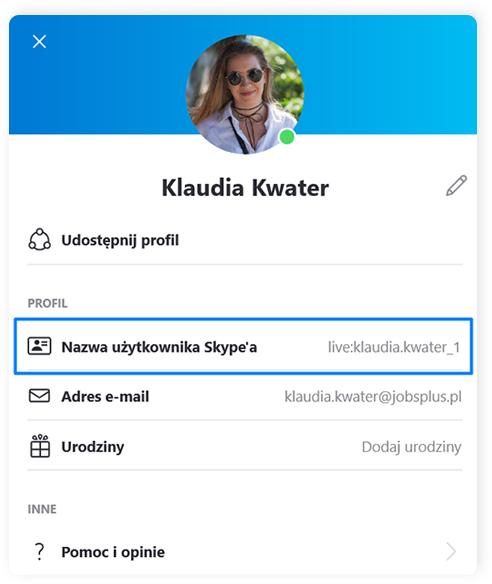 Skype profil uzytkownika 2
