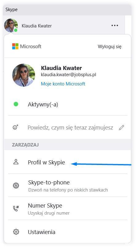 Skype profil uzytkownika.png